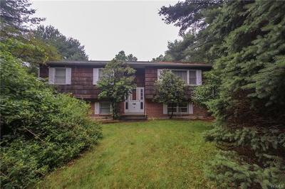 New City Single Family Home For Sale: 10 Old Route 304