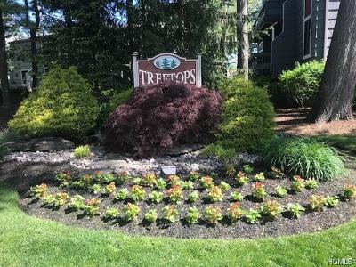 Rockland County Condo/Townhouse For Sale: 35 Treetop Circle