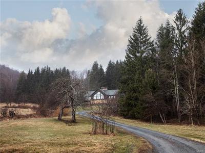 Delaware County Single Family Home For Sale: 791 Pelner Road