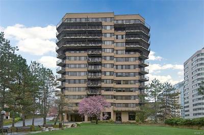 White Plains Condo/Townhouse For Sale: 25 Rockledge Avenue #1113