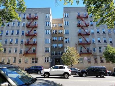 Co-Operative For Sale: 2160 Bronx Park East #1C