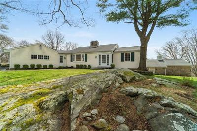 Armonk Single Family Home For Sale: 13 Banksville Road