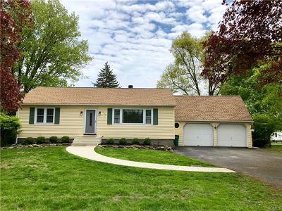 New Paltz Single Family Home For Sale: 228 State Route 32 South