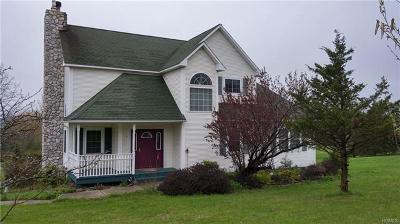 Pine Bush Single Family Home For Sale: 2 Bruyn Avenue
