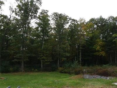 Wurtsboro Residential Lots & Land For Sale: 5 Masten Lake Court