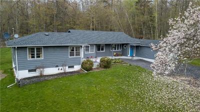 Pine Bush Single Family Home For Sale: 78 Quannacut Road