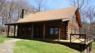 Dutchess County Single Family Home For Sale: 5862 Route 9