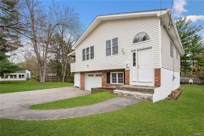 Dutchess County Single Family Home For Sale: 8 Morse Street