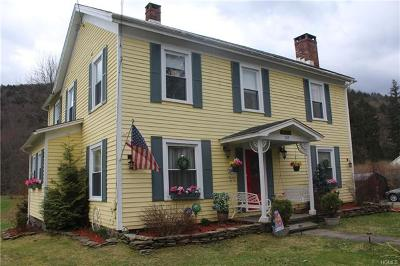 Roscoe NY Single Family Home For Sale: $264,000