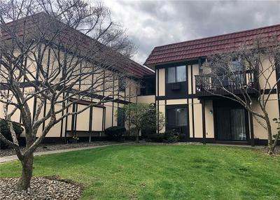 Dutchess County Condo/Townhouse For Sale: 8 Loudon Drive #6