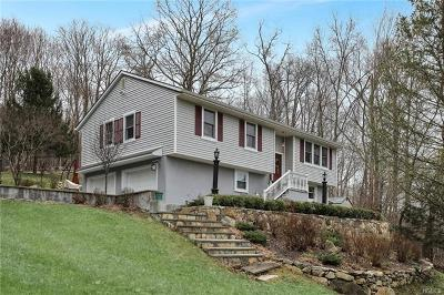 Dutchess County Single Family Home For Sale: 700 Route 292