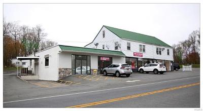 Middletown Commercial For Sale: 2458 Route 302