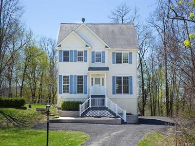 Dutchess County Single Family Home For Sale: 17 Deer Lick Lane