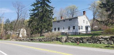 Putnam County Single Family Home For Sale: 1550 Route 9