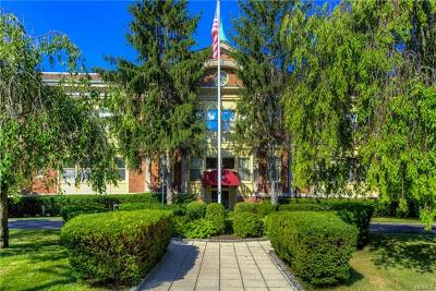 New Rochelle Condo/Townhouse For Sale: 1250 North Avenue #318