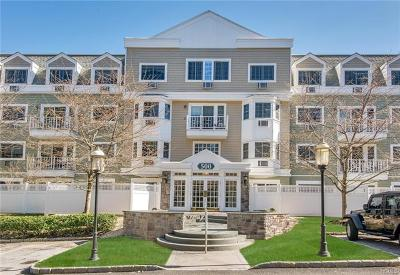 Westchester County Condo/Townhouse For Sale: 500 Pondside Drive #1B