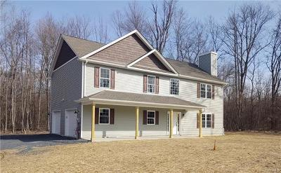 Single Family Home For Sale: 1474 County Route 1