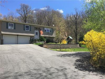 Stormville Single Family Home For Sale: 366 Hosner Mountain Road