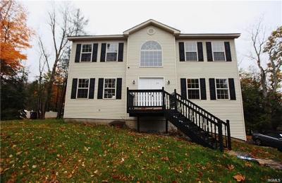 Rock Hill Single Family Home For Sale: 45 Dartmouth Drive