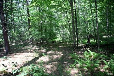 Cochecton Residential Lots & Land For Sale: Skinners Falls Road