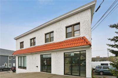 Eastchester Commercial For Sale: 15 J R Albanese Place