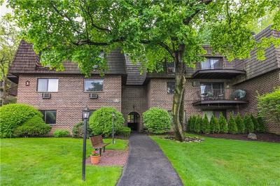 Ossining Condo/Townhouse For Sale: 3 Briarcliff Drive South #9