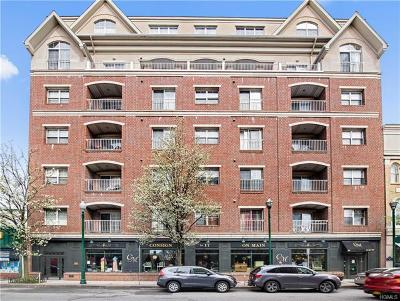 New Rochelle NY Condo/Townhouse For Sale: $499,000