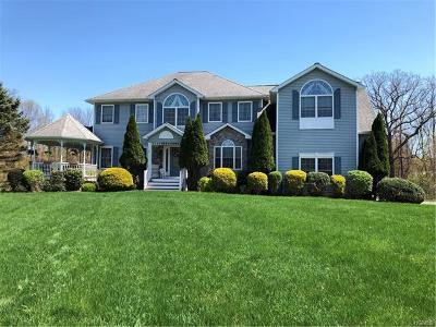 Dutchess County Single Family Home For Sale: 54 Baron Drive