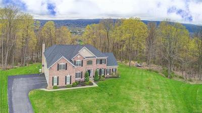 Dutchess County Single Family Home For Sale: 208 Faye Court