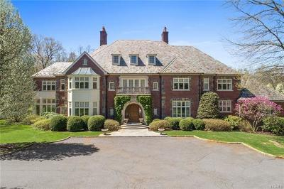 Armonk Single Family Home For Sale: 3 Cowdray Park Drive