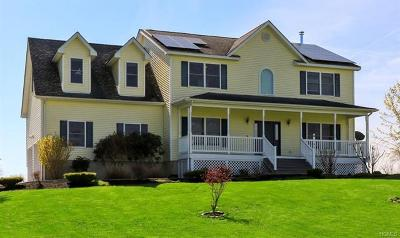 Pine Bush Single Family Home For Sale: 385 Gillespie Street
