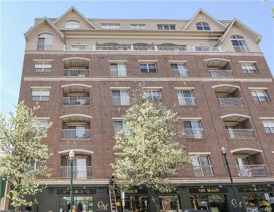 Westchester County Condo/Townhouse For Sale: 543 Main Street #213