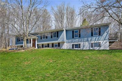 Dutchess County Single Family Home For Sale: 280 Route 216