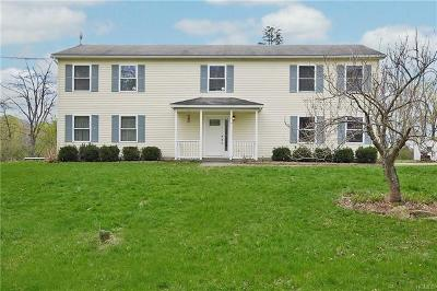 Dutchess County Single Family Home For Sale: 15 Michael Lane