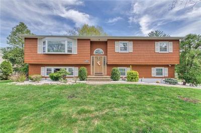 Nanuet Single Family Home For Sale: 3 Pelham Avenue