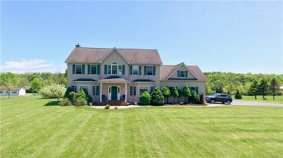 Pine Bush Single Family Home For Sale: 467 Gillespie Street