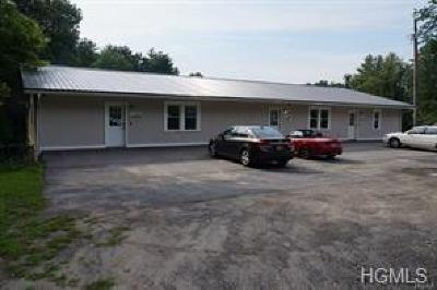 Wurtsboro Commercial For Sale: 2458 State Route 209