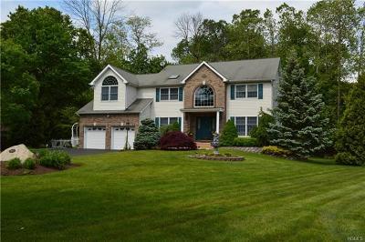 Nanuet Single Family Home For Sale: 63 James Drive