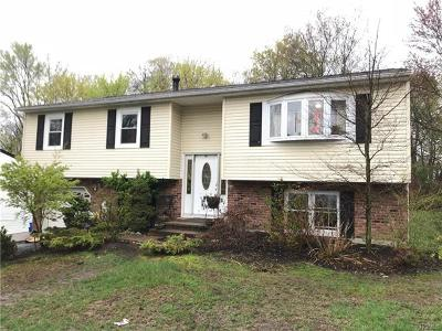 Nanuet Single Family Home For Sale: 60 Springbrook Road