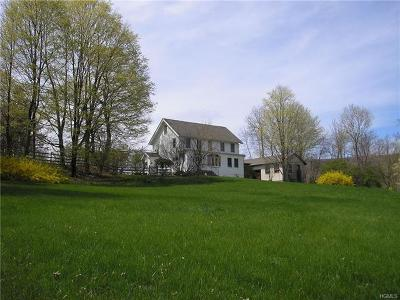 Orange County Single Family Home For Sale: 7 Schunnemunk Road