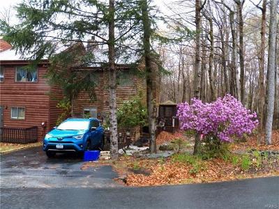Barryville, Woodridge Single Family Home For Sale: 8 Alpine Drive