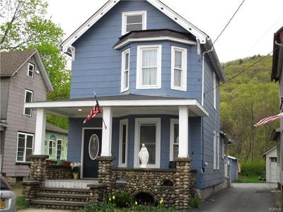 Port Jervis Single Family Home For Sale: 19 1/2 Erie Street