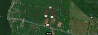 Residential Lots & Land For Sale: Nearing Road
