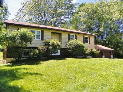 Dutchess County Single Family Home For Sale: 122 Arthursburg Road