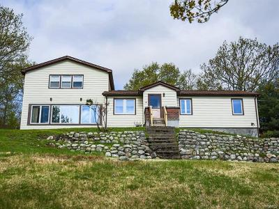 Bloomingburg Single Family Home For Sale: 84 Shawanga Lodge Road