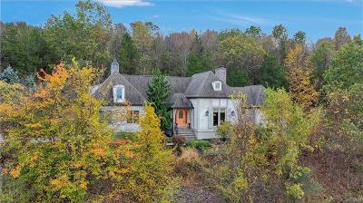 Orange County Single Family Home For Sale: 8 Silo Lane