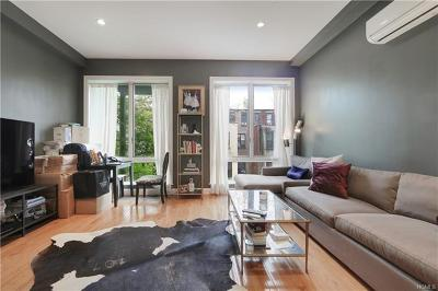 New York Condo/Townhouse For Sale: 148 West 121st Street #3