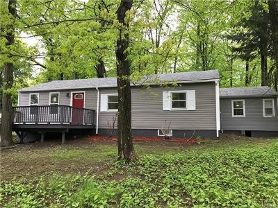 Single Family Home For Sale: 1336 State Route 208