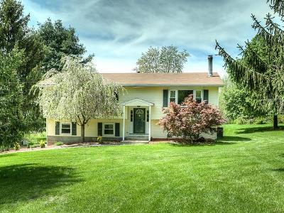 Washingtonville Single Family Home For Sale: 209 Beattie Road