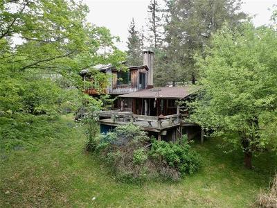 Neversink, Grahamsville, Denning Single Family Home For Sale: 416 Greenville Road